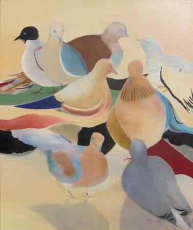 Les pigeons d'Ethiopie